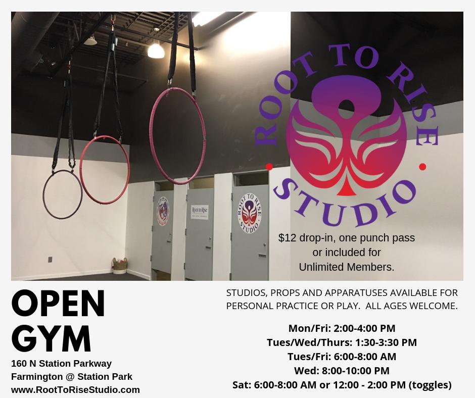 New Studio Open Gym